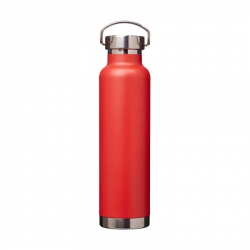 Vacuum insulated bottle Thor