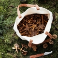 mushroom-picking set.jpg